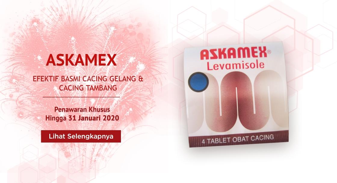 Askamex Jan 2020