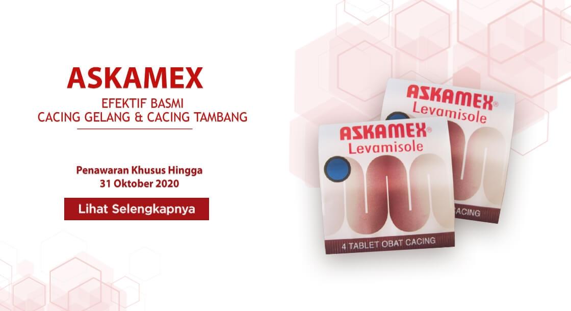 Askamex Okt 2020